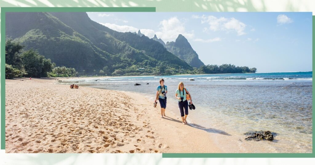 A new travel program for tourists to give back