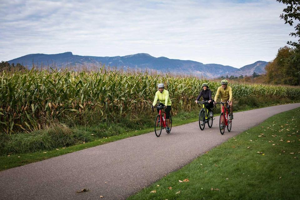 A group cycling with VBT Bicycling Vacations, voted one of the world's best Tour Operators